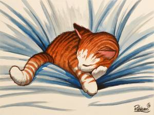 Cat nap vavasseur art
