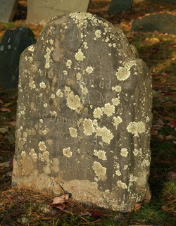 gravestone moss  john priest