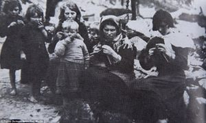 Knitters - St Kilda